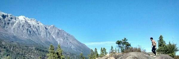 Cerro pino cielo celeste