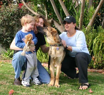 Mack And Family German Shepherd Rescue Pet Identification
