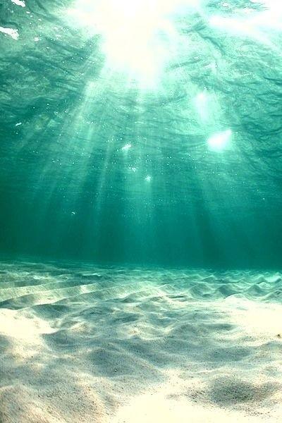 Under The Sea Via Tumblr Ocean Photography Ocean Landscape Ocean Wallpaper