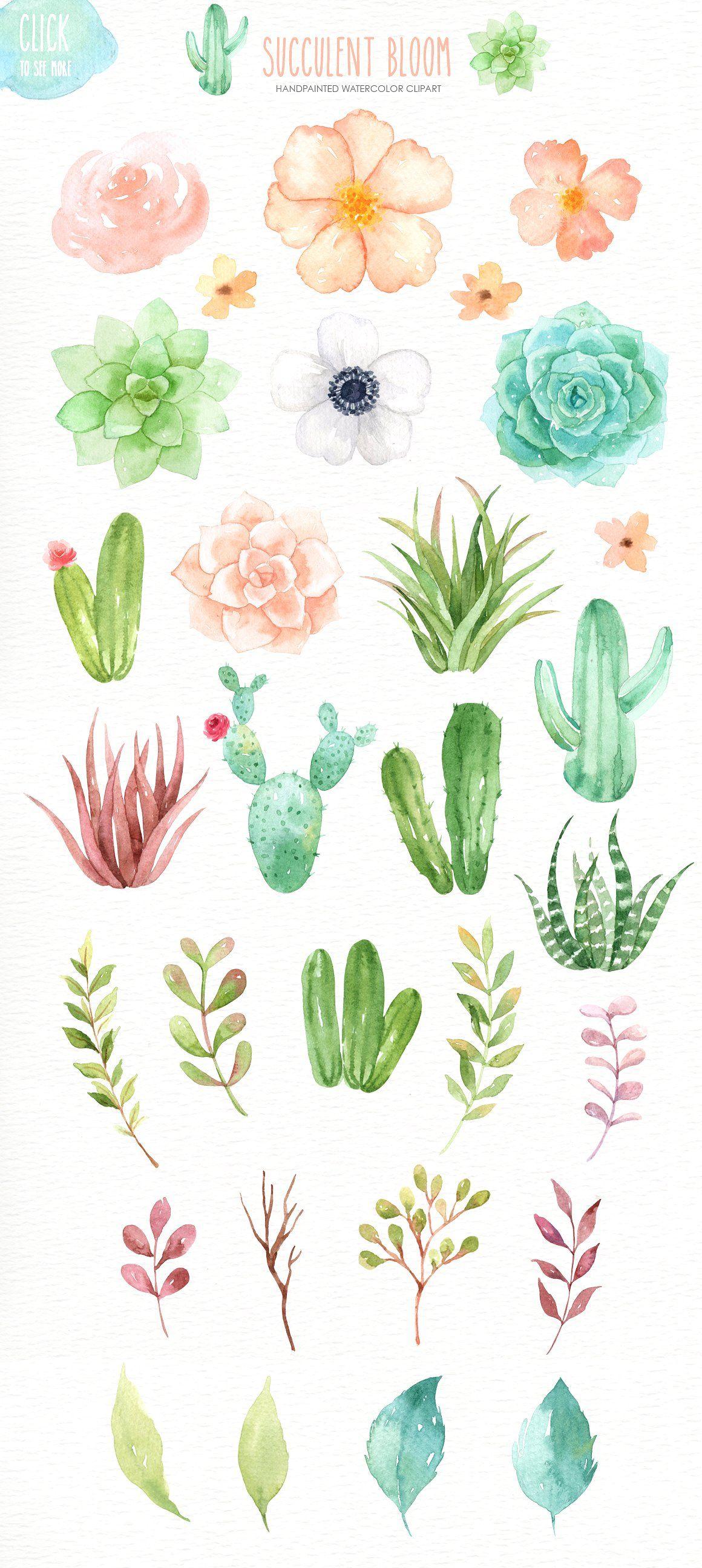 Succulent Bloom Watercolor Cliparts Suluboya Cicekler Etli Yaprakli Bitkiler Cicek