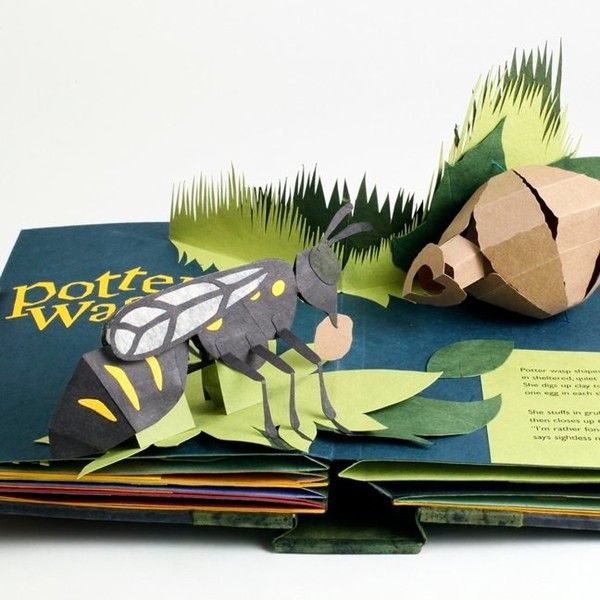 Welcome To The Neighborwood A Pop Up Book Of Animal