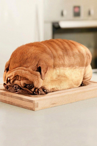 we thought it was raisin bread! laughed til we cried.