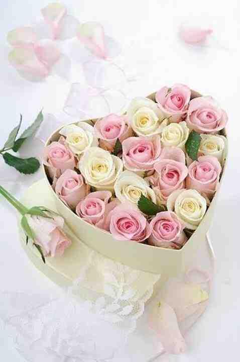 ʀeƥɪiied Vƴ C ʀsxʌiʌ ƭʌiʌ Geburtstag Blumen
