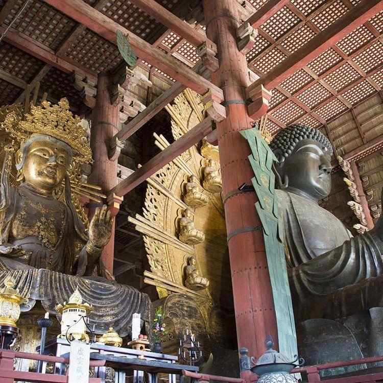 Free trip to Japan💕Check the campaign😘 malaysia.fun-japan.jp  thailand.fun-japan.jp