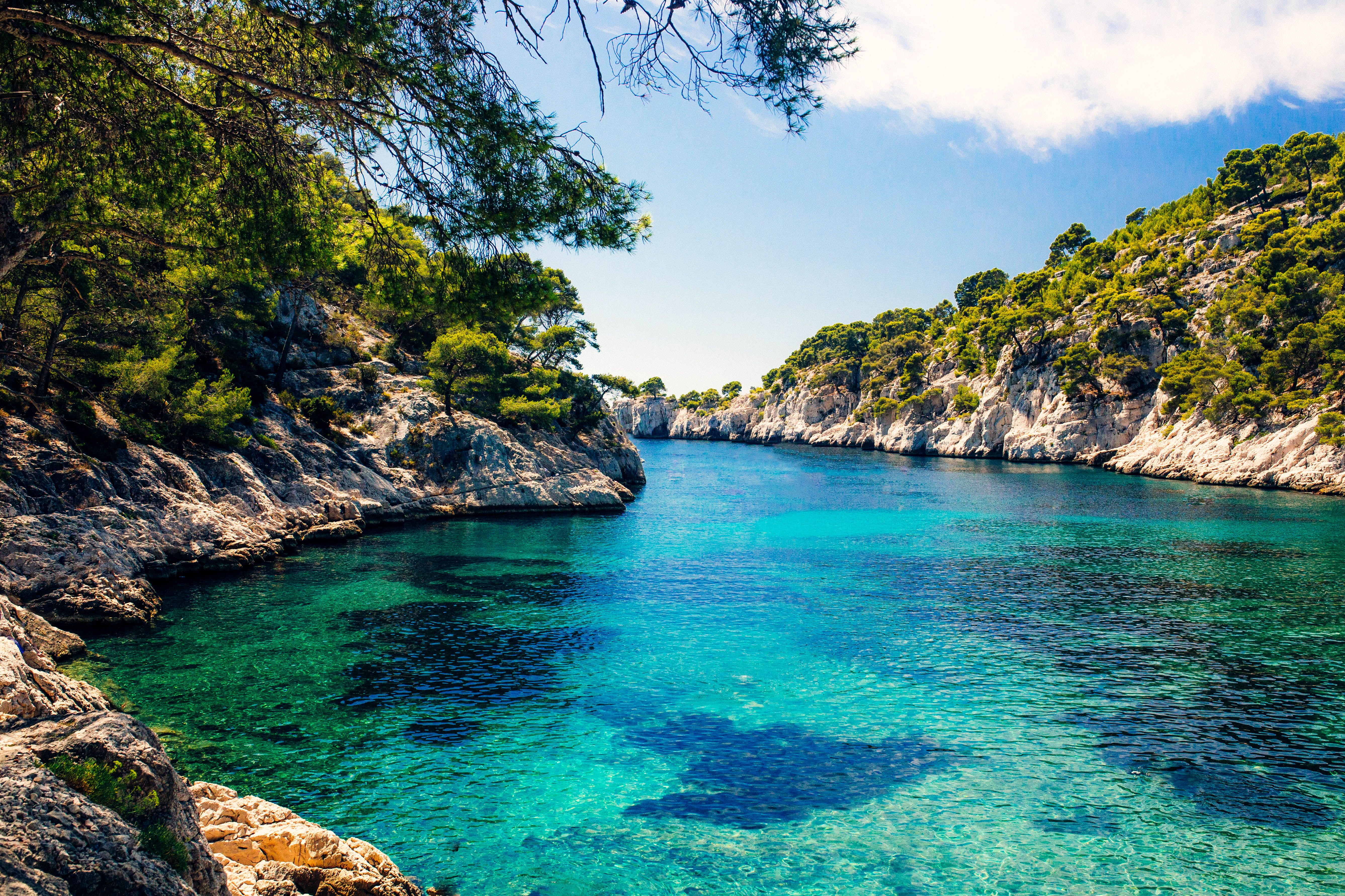 Good Vitamin Sea The Calanques Of Cassis, France, Where The Sea Has Formed  Narrow Inlets Among The Steep Cliffs.