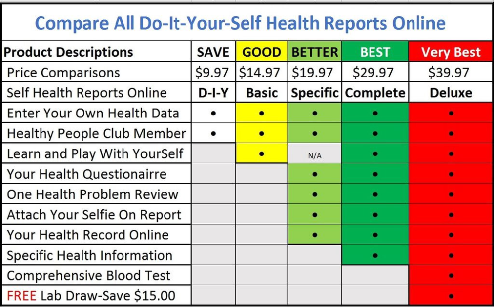 Health Check Report Template 2 Professional Templates Health Check Report Template Play To Learn