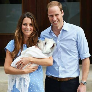 Playmate for little Prince George?