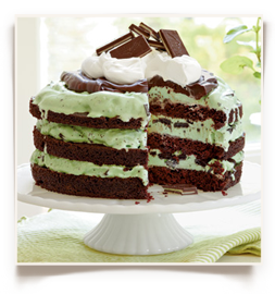 My boys would flip for this Mint Chocolate Chip Ice-Cream Cake via Southern Living and Ballard Design