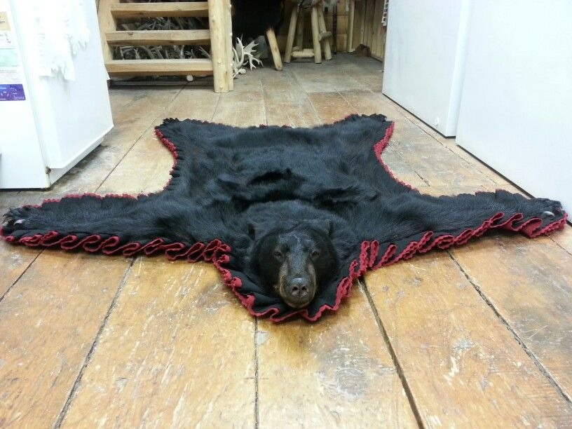 b7259447c70 Black Bear Rug Taxidermy done by the crew at www.lakeviewtaxidermy ...