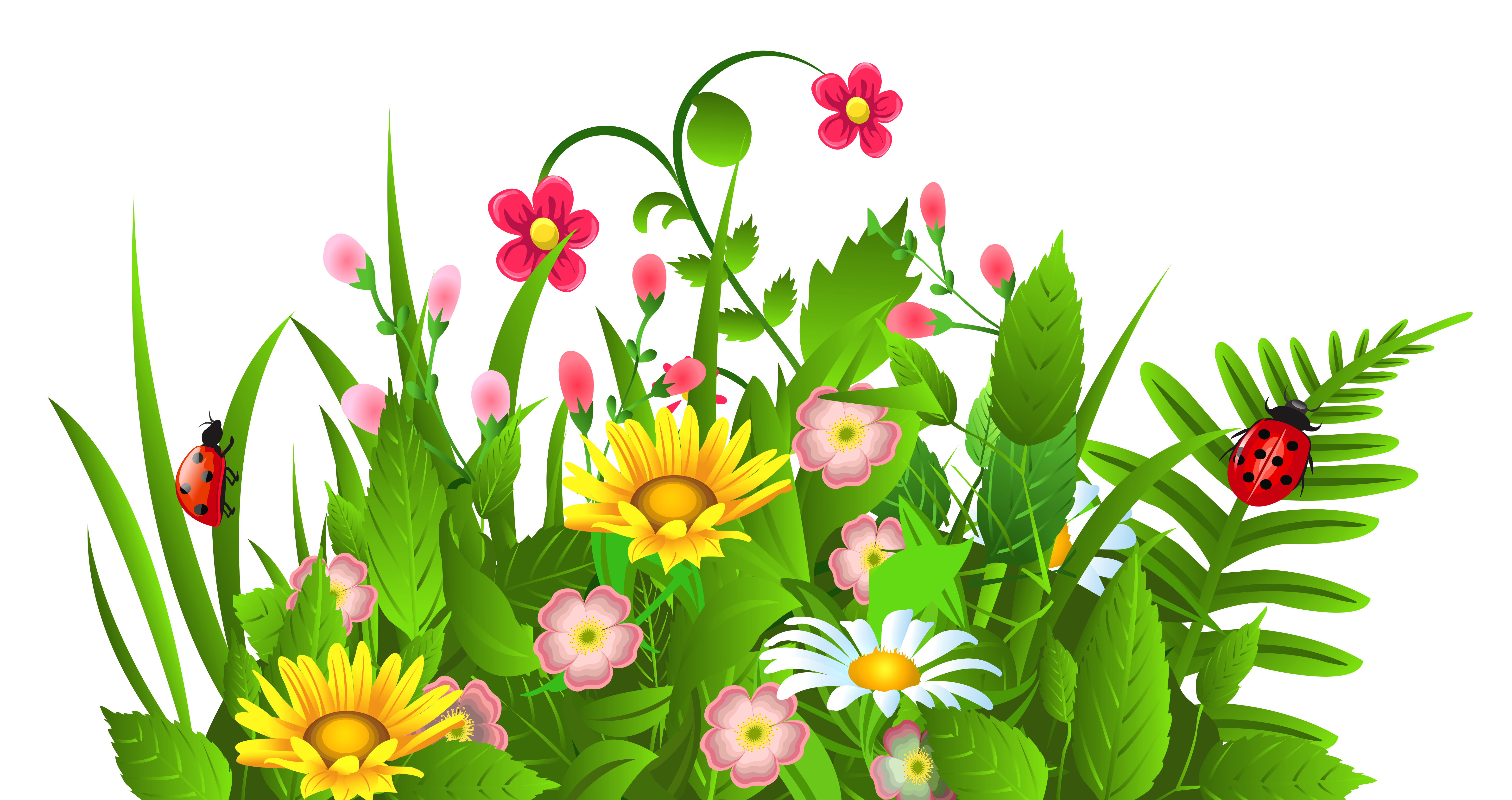 Cute Grass and Flowers PNG Clipart Flower images, Flower