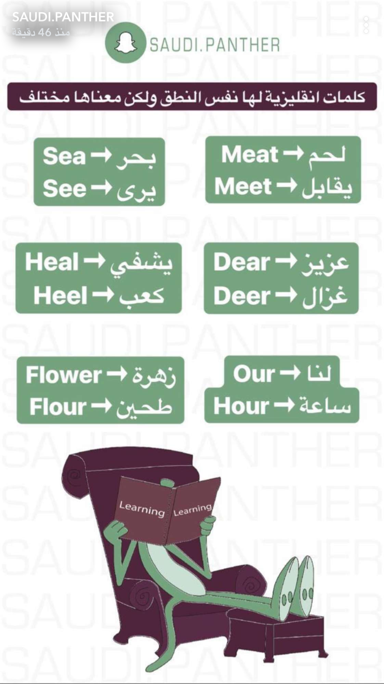 Learning Arabic Msa Fabiennem English Language Learning Grammar English Speaking Skills English Language Teaching