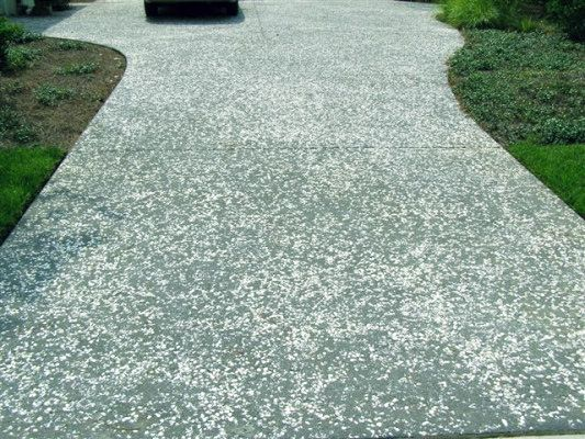 Crushed Oyster Shell Used As An Aggregate In Concrete