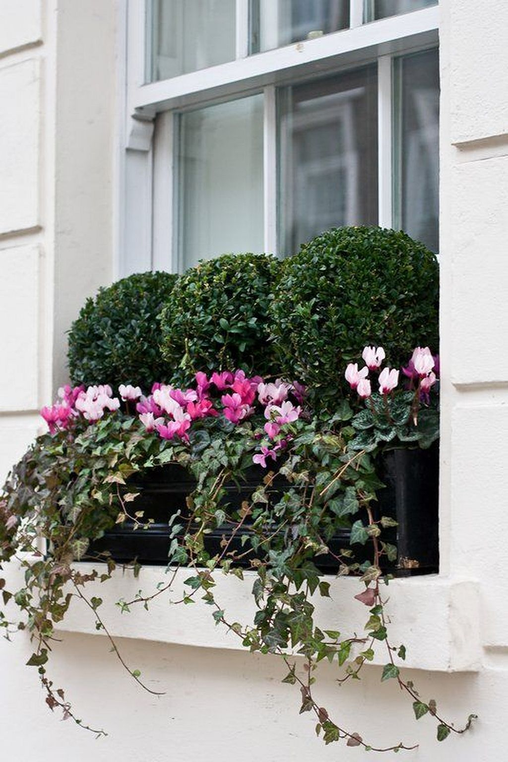 Window box ideas without flowers  cool  awesome flowering window boxes ideas gardenmagz