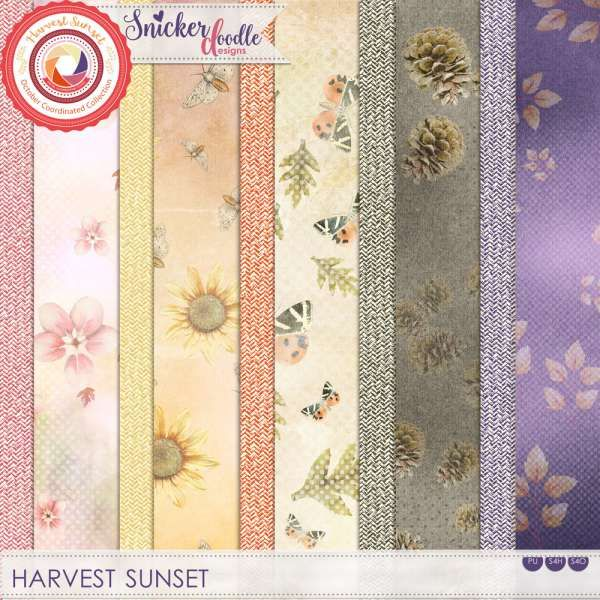 $1 Each at #theStudio for a limited time.  Harvest Sunset Herringbone Patterned Papers by #SnickerdoodleDesigns is designed in the vibrant and warm colors of the Fall sunset.  #digitalscrapbooking Information about this product: 5 herringbone patterned papers