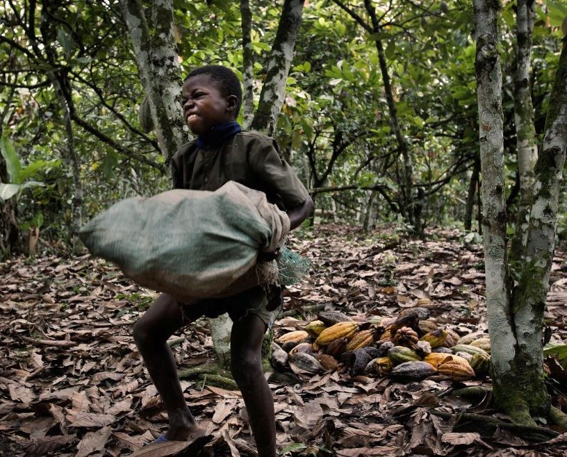 West Africa Kids Taken From The Poorest Areas And Forced To Work - The porest