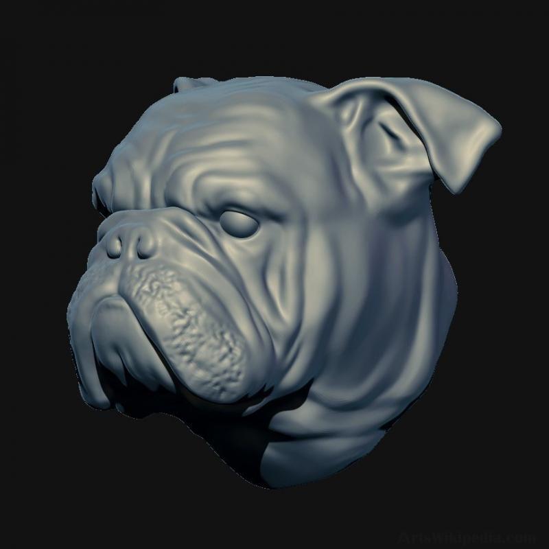 3d English Bulldog Head In 2020 Bulldog Puppies Puppy Store