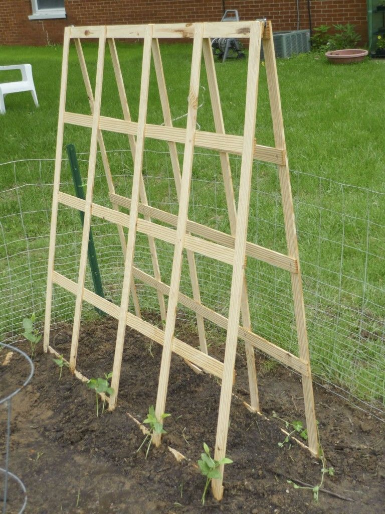 how to build a folding trellis for easy storage at the end of the