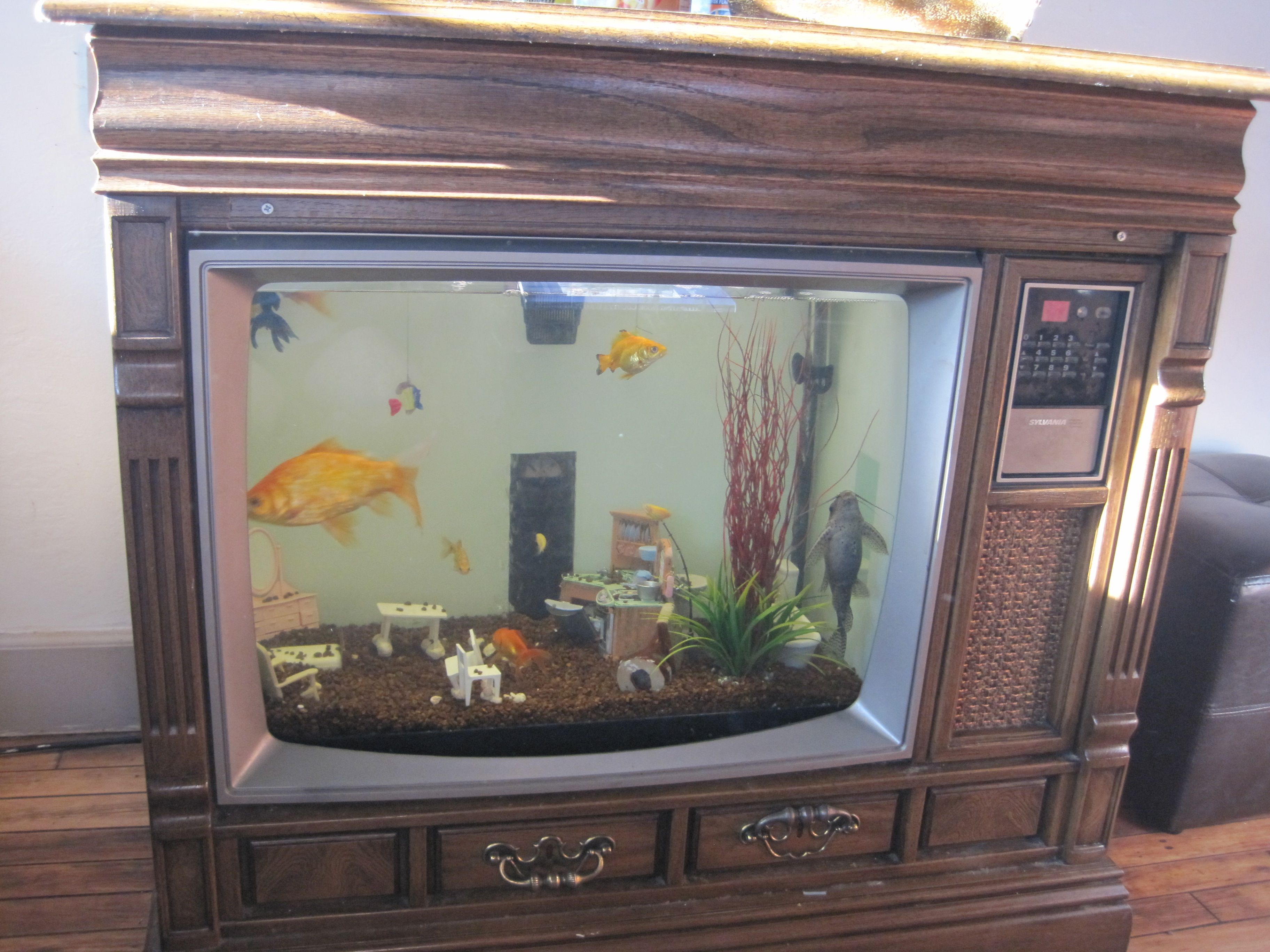 We made a old TV into a fish tank