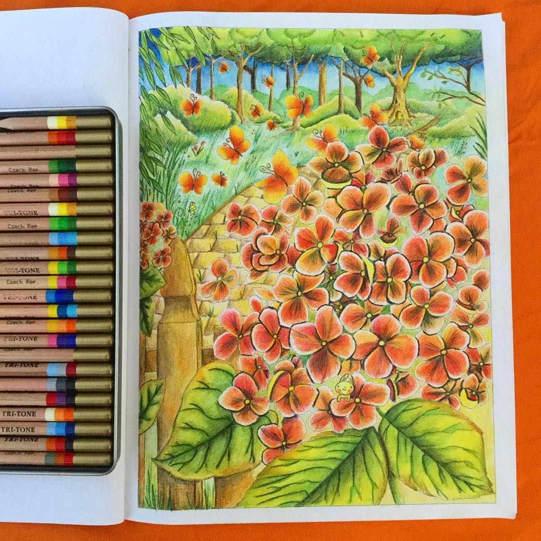 The Buns Coloring Book By Dealenihan Koh I Noor Tri Tone