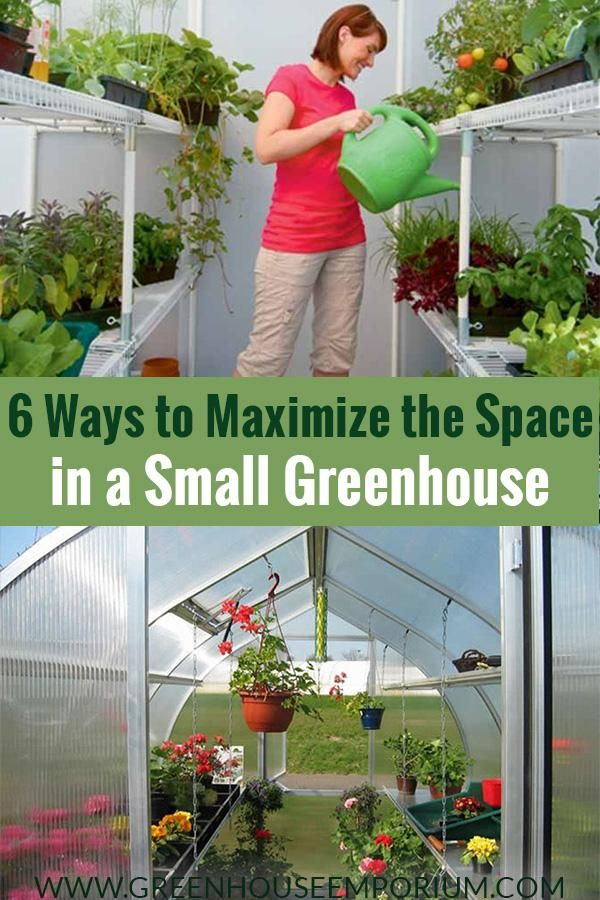Not everyone can have a huge greenhouse. We give you some ideas to maximize your growing space in a small greenhouse so that you can still have a large yield. It's not always the size that matters, but how you manage it! Get more information here! #greenhousegardening #greenhouse #smallgreenhouse