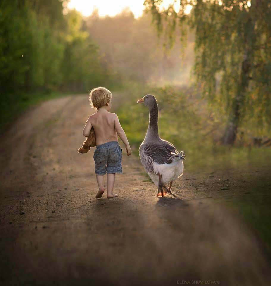 a boy and his goose. | people amaze me | pinterest | country scenes