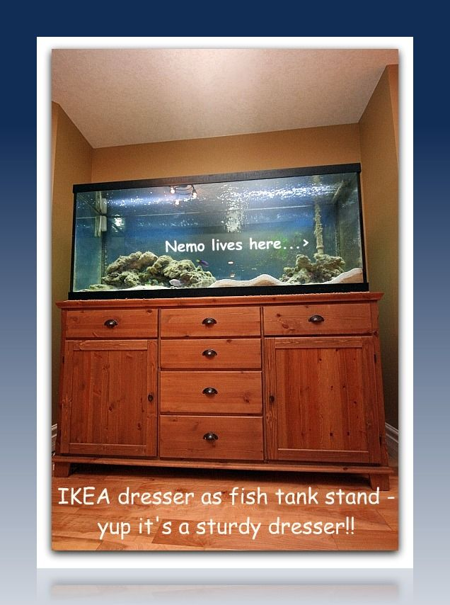 Pin By Doctortazz On Kennedy Real Estate Beautiful Homes Fish Tank Cabinets Fish Tank Fish Tank Stand