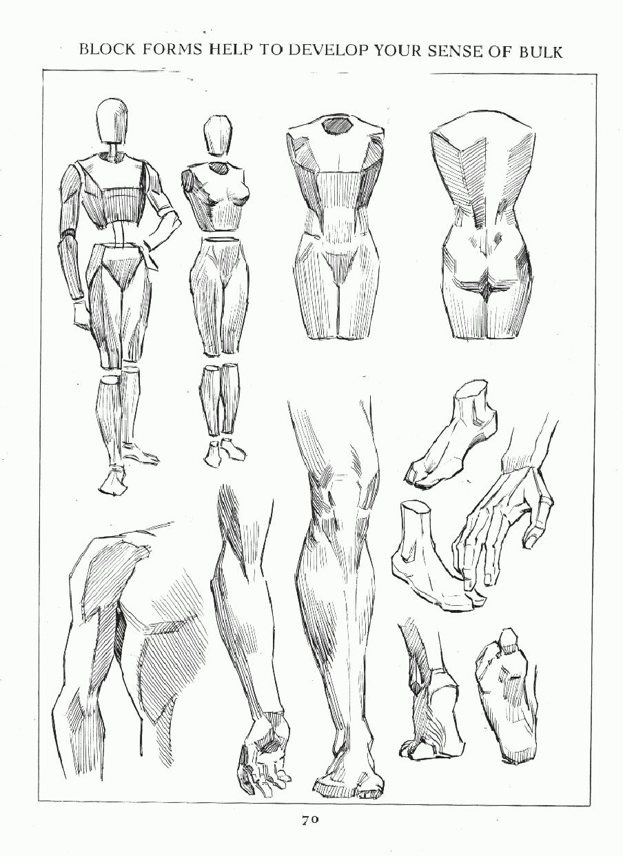 Andrew Loomis Figure Drawing For All Its Worth With Images