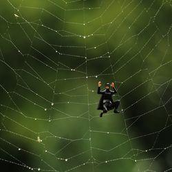 Spiderman's identity crisis