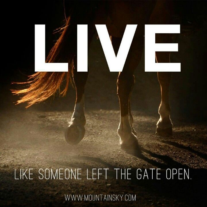 live like someone left the gate open horse rider sayings