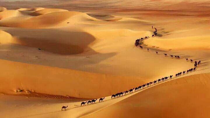 Gran caravana!!!