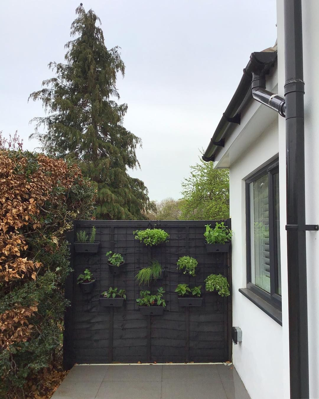 Homebase Garden Wall With Herbs Etc For Side Fence Garden Wall Bungalow Renovation Outdoor Decor