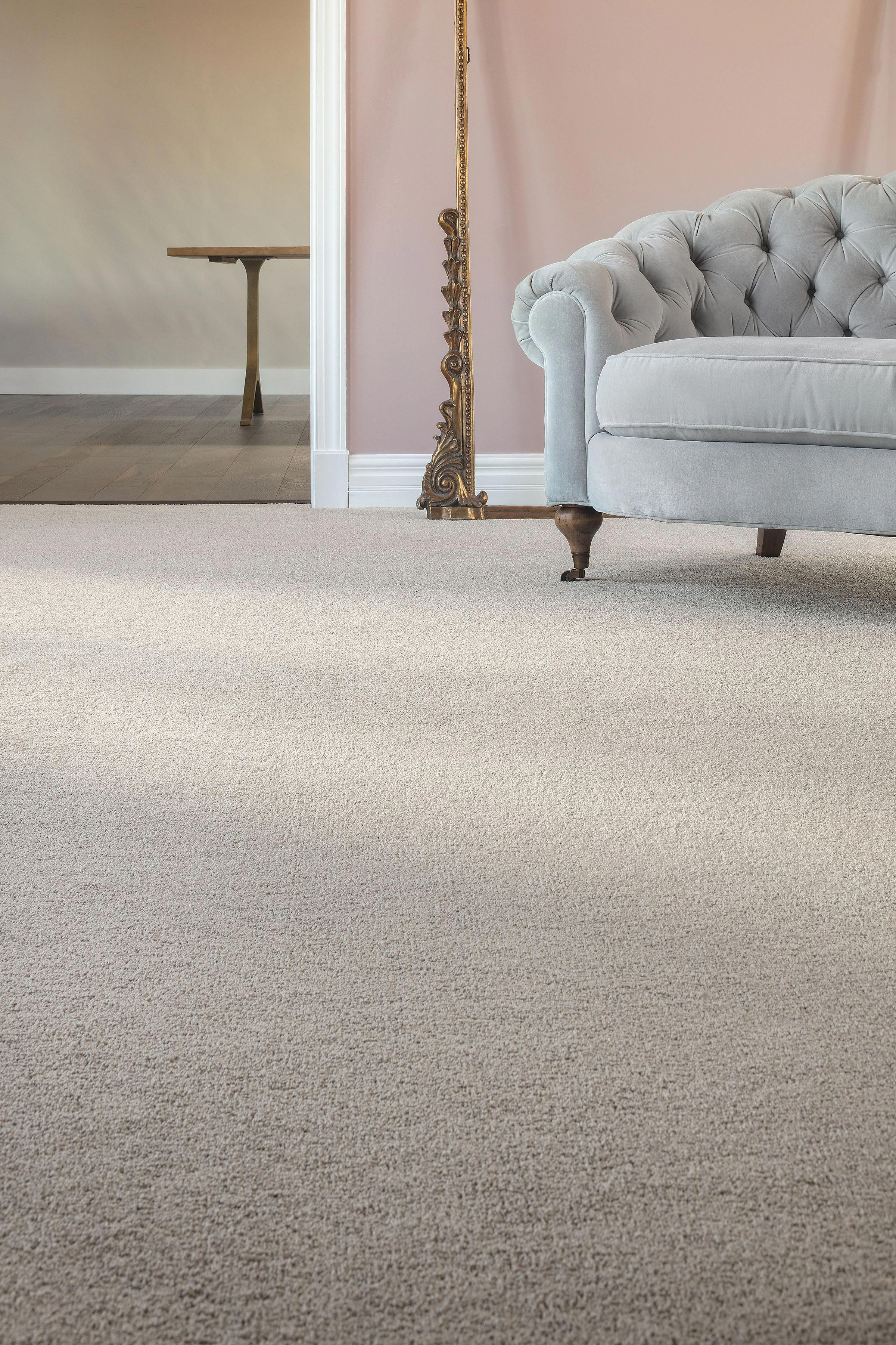 Solid + Neutral Carpet  Neutral carpet, Living room carpet