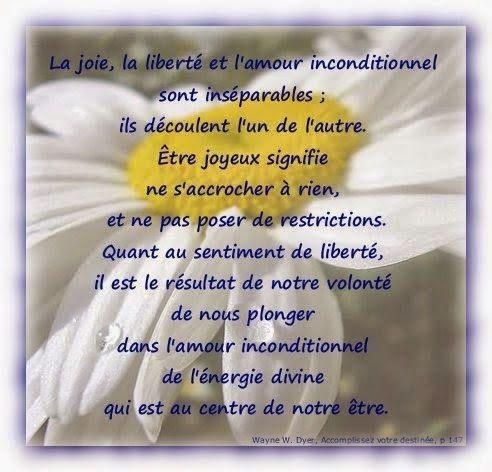 Citations Option Bonheur Citation Sur L Amour