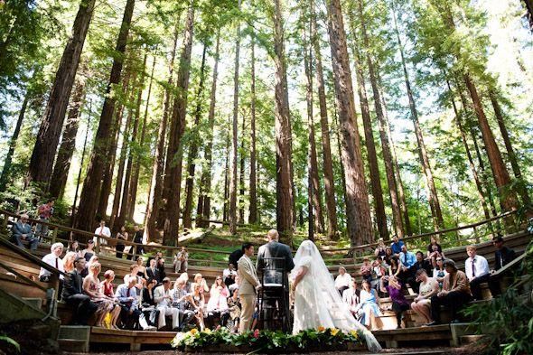 Bon 016_wedding_uc_berkeley_botanical_garden_floryphoto (590×393) · Redwood  WeddingNicole SNorthern CaliforniaBotanical GardensWedding Photography Wedding ...
