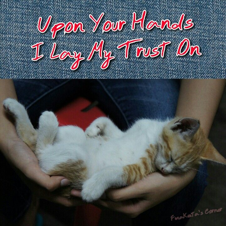 On Your Hands I Lay My Trust On