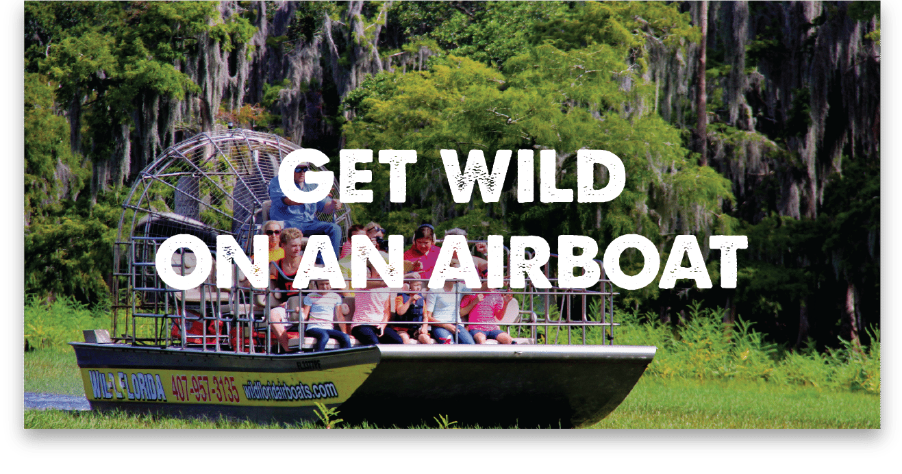 orlando airboat ride at wild florida orlando airboat tours