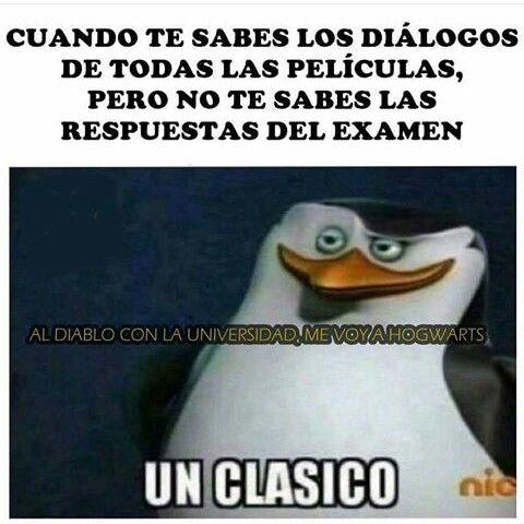 Sigueme En Pinterest Rodrigueitor22 Memes Frases Y Chistes Y Mucho Mas En Espanol Y En Ingles En Mensajes Y Coment Memes Graciosos Memes Clasicos Memes