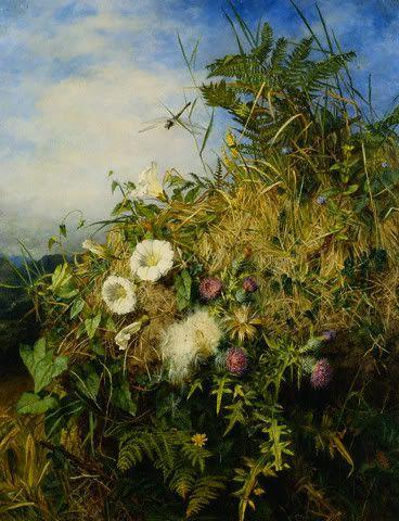 Martha Darley Mutrie (British 1824-1885) - Wild flowers. 1850.