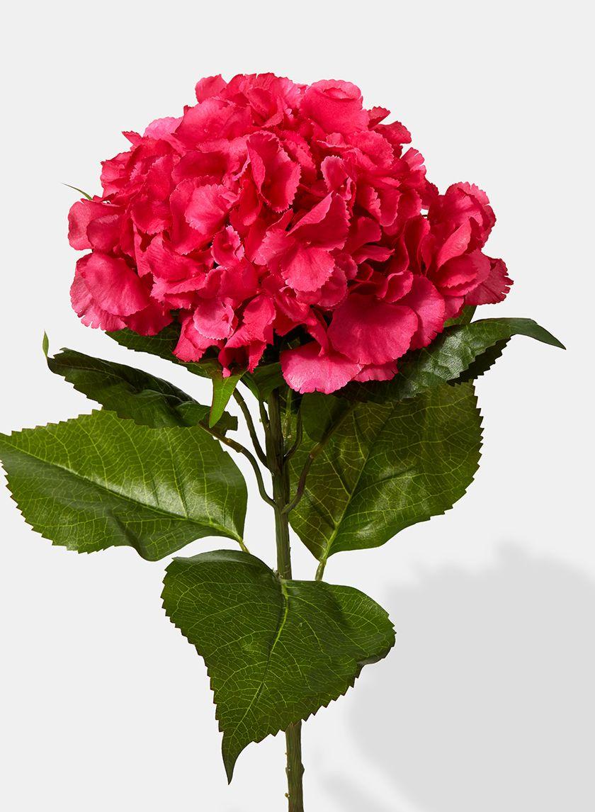 25in extra large dark pink hydrangea pink hydrangea