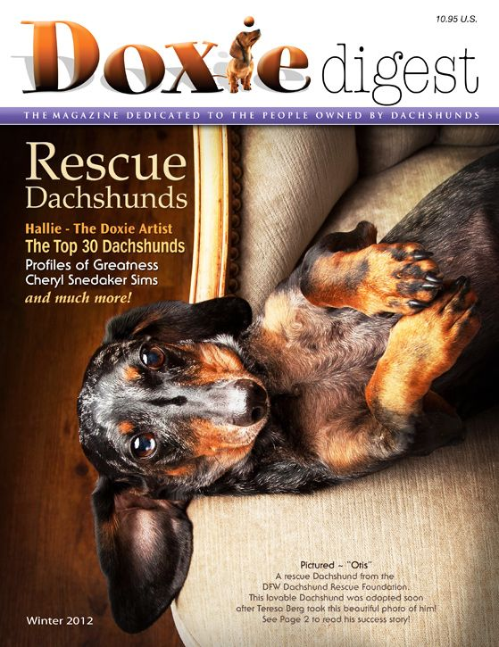 Doxie Digest Magazine: dedicated to all Dachshunds and the people that are owned by their Dachshunds