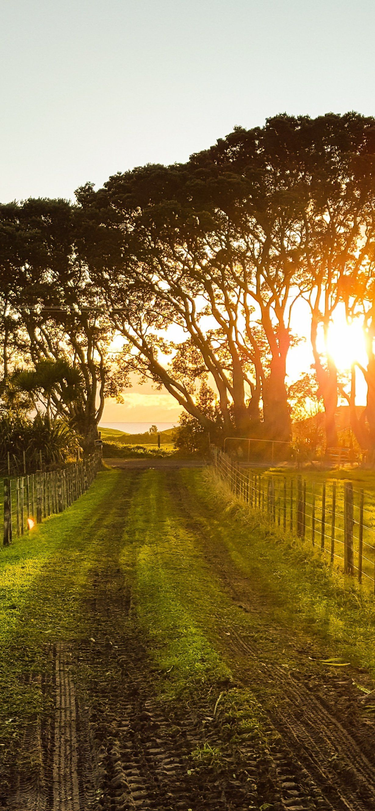 Countryside Sunset Landscape Summer Field Farm Sunlight Outdoor Nature Pictures Sunset Landscape Country Sunset