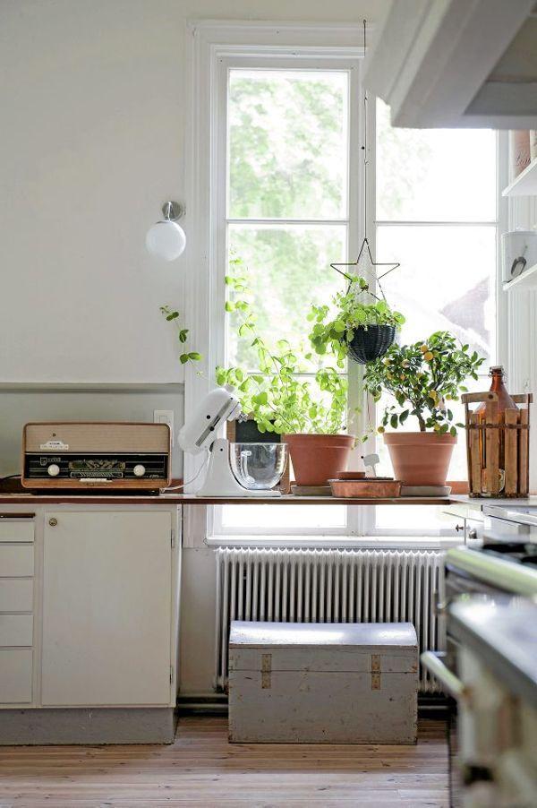 Decorare la tua cucina con piante aromatiche http://www.repiuweb ...