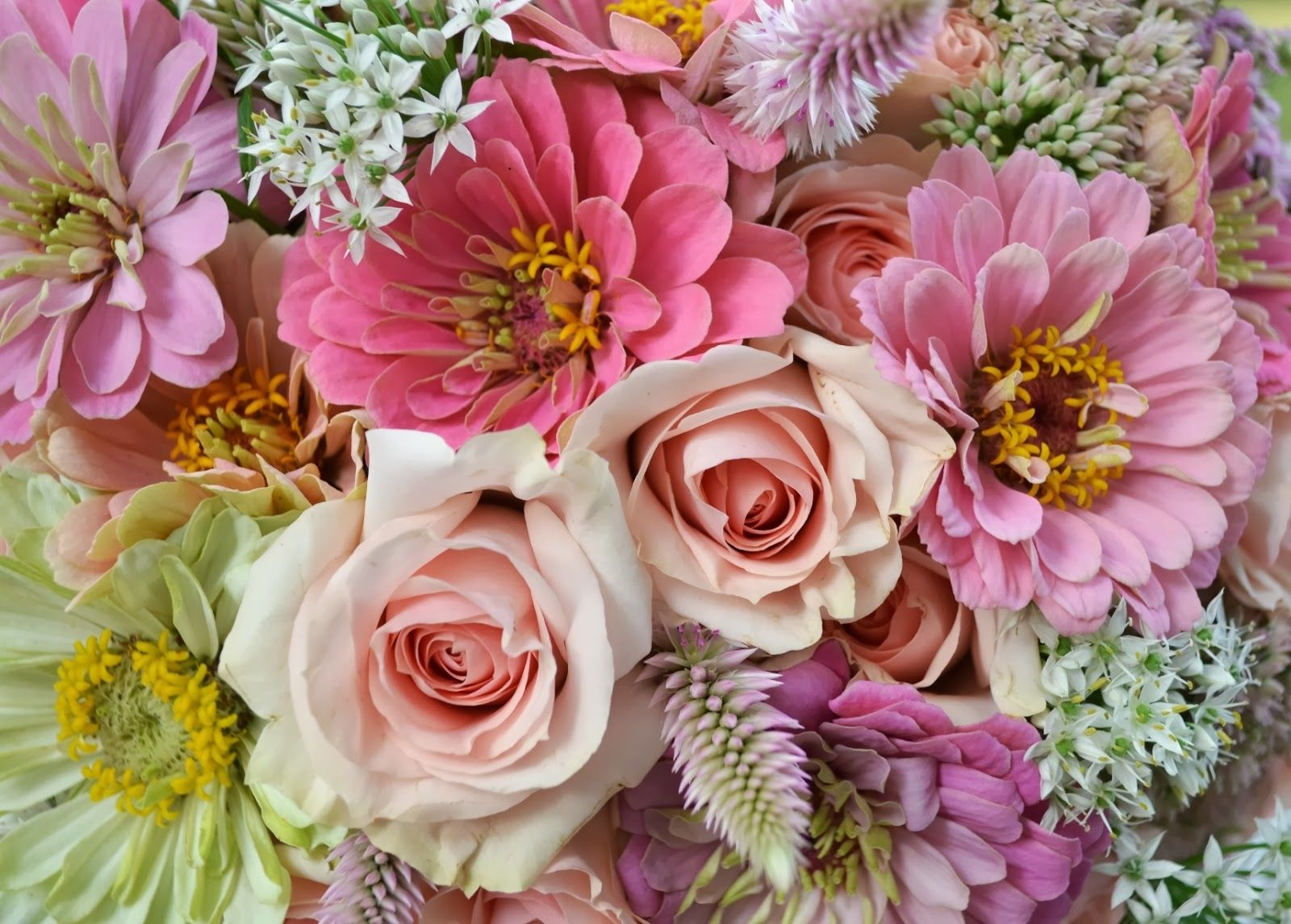 Flowers that are from the garden include feather celosia, pink and ...