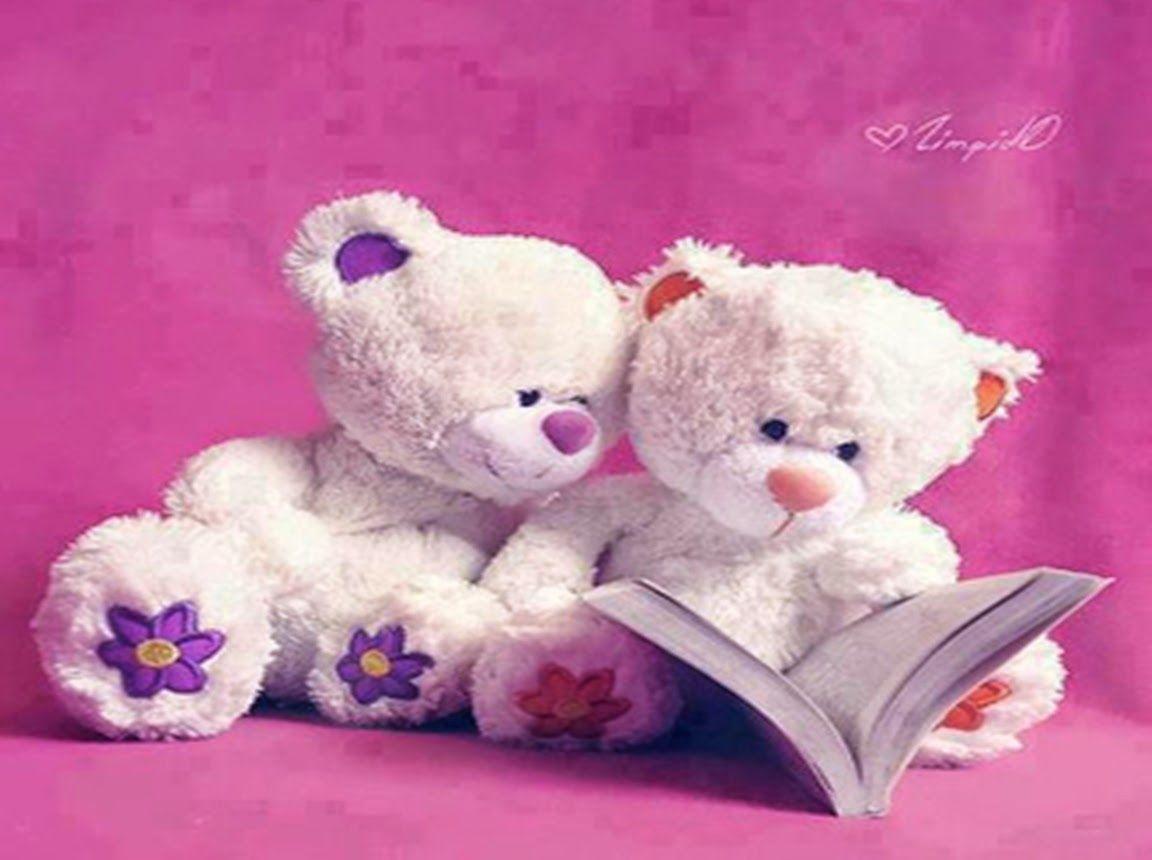 pictures wonderful cute teddy bears gallery sweet love couple