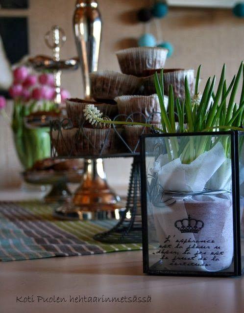 Koti Puolen hehtaarin metsässä #synttärit #sisustus #livingandroom #perfecthome  #interior #decoration #livingroom #olohuone
