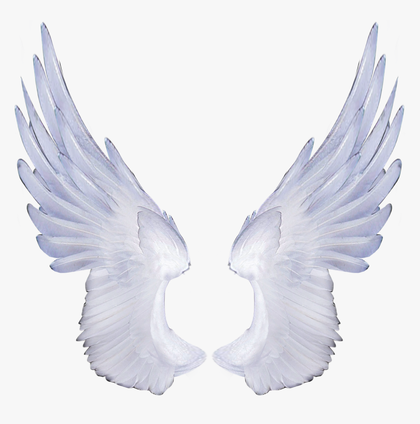 Free Angel Wings Transparent Background Angel Transparent Background Wing Png Png Download Is Free Transparent Png Image To Wings Png Wings Angel Wings Png