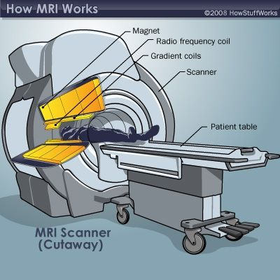 How MRI Works | Medical Field Career Options | Magnetic