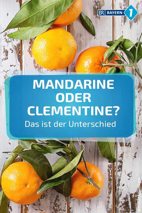 Unterschied Clementine Mandarine