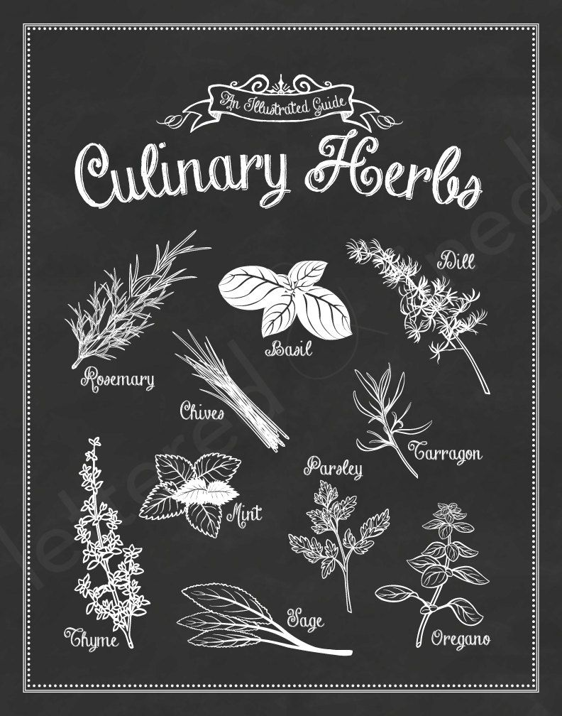 SET Of 2 Kitchen Prints From An Illustrated Guide Series   11x14 Prints.  $42.00,