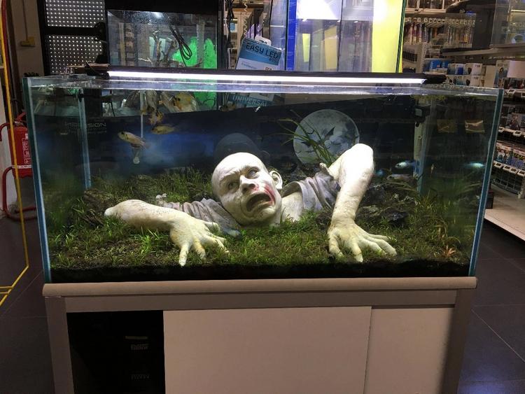 Statue Zombie Dans Un Aquarium Aquarium Aquascape Aquarium Design Aquarium Fische